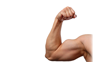 ali se mišice lahko spremenijo v maščobo