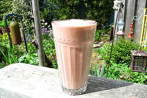 Gorilla Labs smoothie iz riževih proteinov