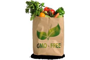 Certifikat brez gensko spremenjenih organizmov
